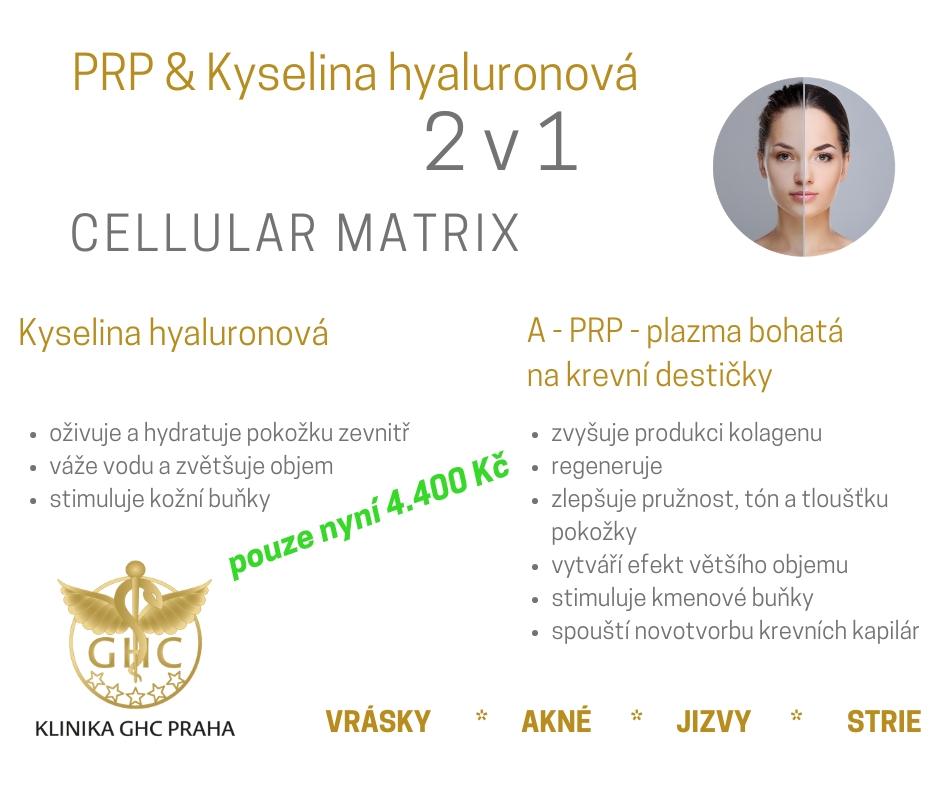 Cellular Martix